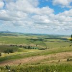 What is the Palouse Prarie